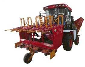 Sweetcorn harvester